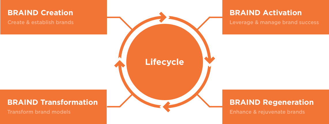 brand lifecycle
